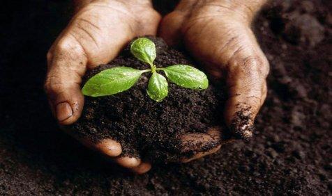 कचरे से खाद – स्वच्छता में नया आयाम